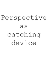 Perspective as a catching device.png