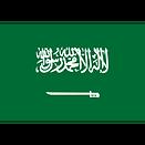 Saudi_Arabia_(National_Team)logo_square.