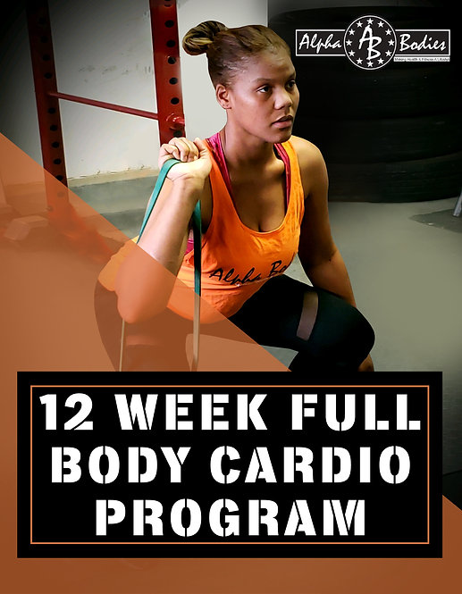 Full Body Cardio Program
