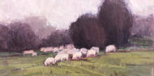 Sheep in Early Spring