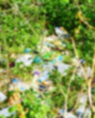 Plasticscapes.jpg