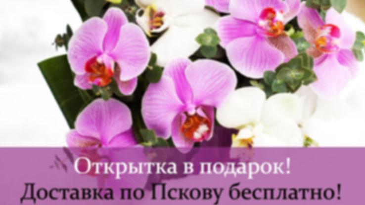 Uxr5v34v8RI.jpg