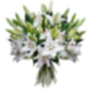 Купить лилию Псков