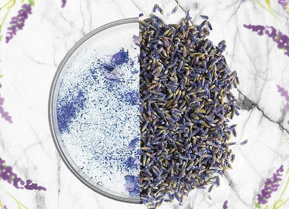 Purple Lavender Bud (40g)