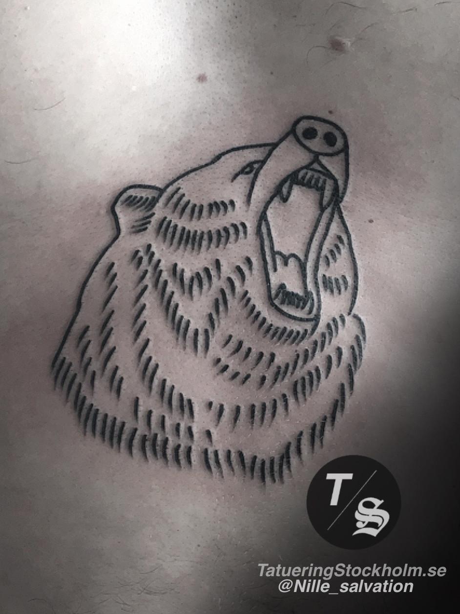 Roaring bear by @nille_salvation.JPG