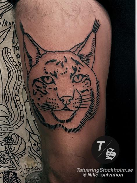 Lynx tattoo by @nille_salvation.JPG