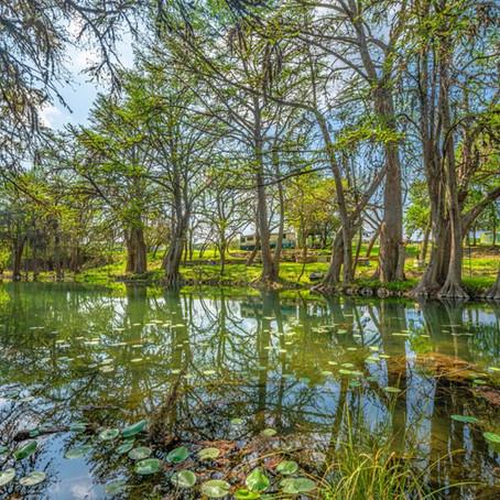 166-acre ranch | hunt