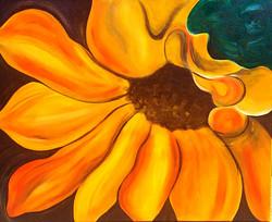 Sunflower Oasis