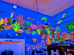 Palmetto Reef