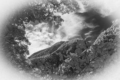 Taiwan Mountains-57.JPG