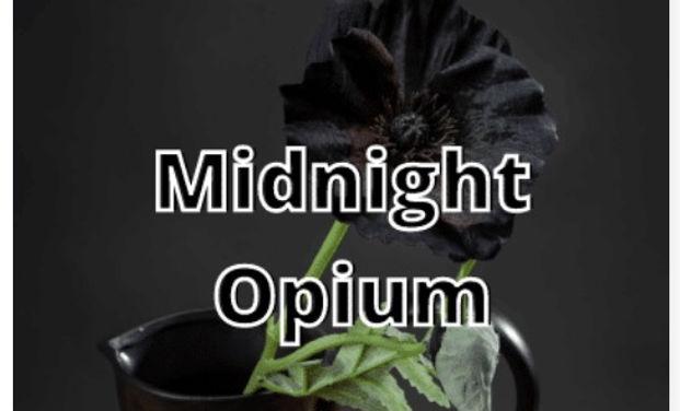 midnight Opium.jpg