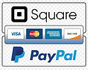 immage of square and pay pall jpge.jpg