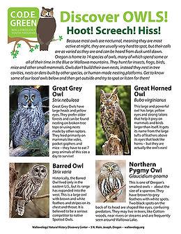OWL info sheet2.p1.sm.jpg