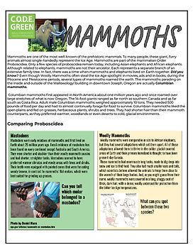 Mammoth Kit.sm.jpg