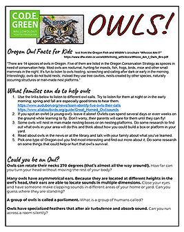 Owl Take Home Sheet.sm.jpg