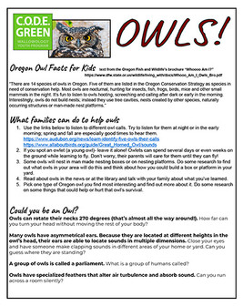 Owl Take Home Sheet.sm.jpg