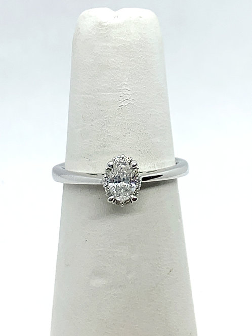 WG Oval Diamond with halo Ring