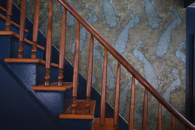 Peacock Wallpaper