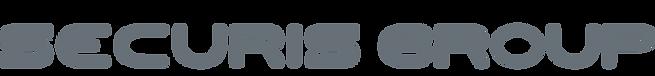 Logo%20Securis%20Group_edited.png