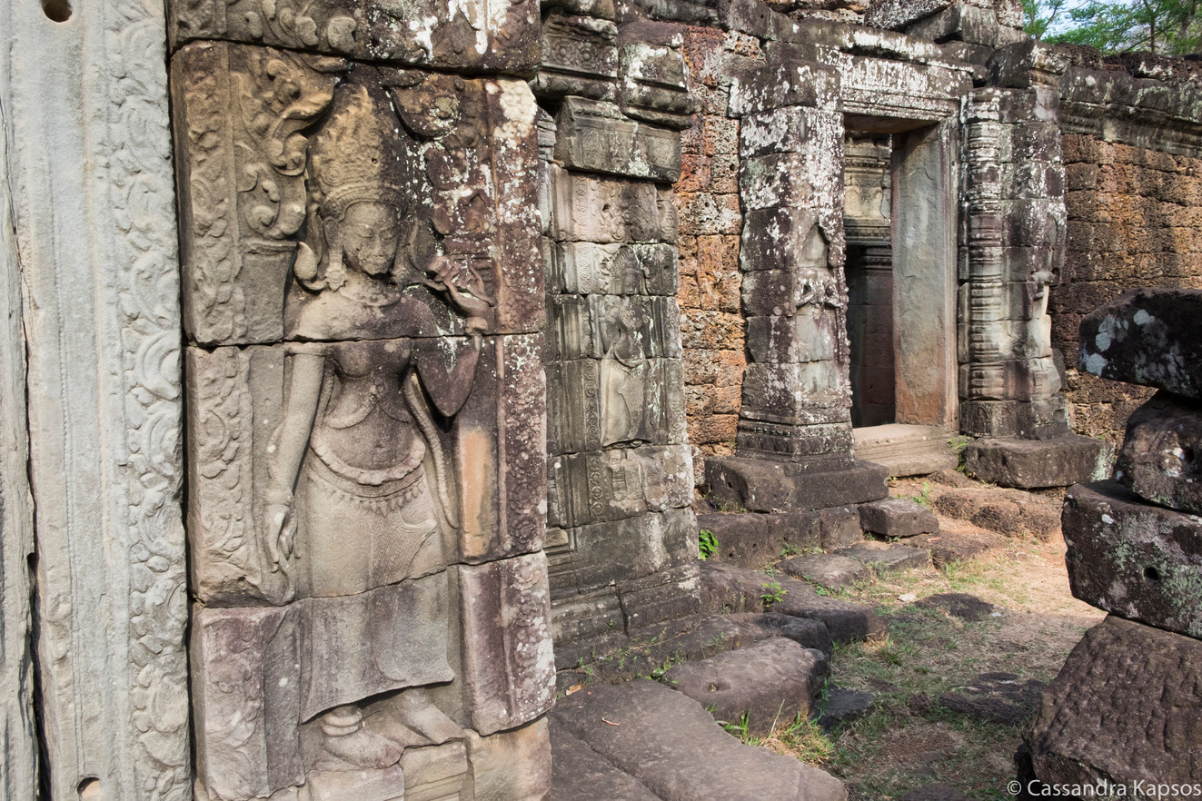 Angkor Stone Lichen
