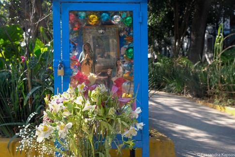 Shrine Flowers