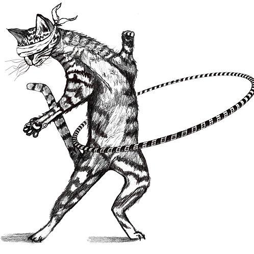 Feline the Flow Hoop Cat