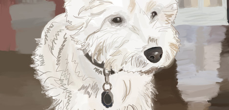 Barry the Dog Digital Illustration