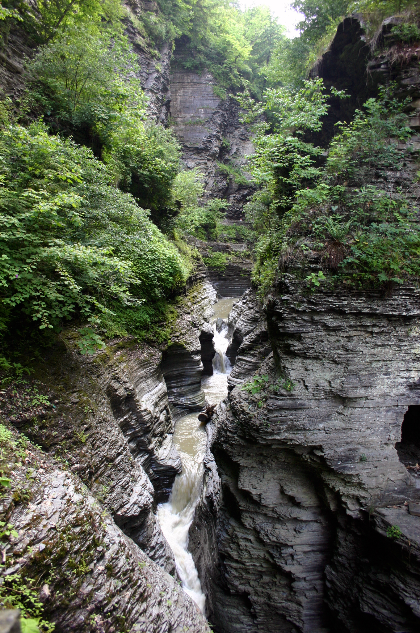 Gorge in Watkins Glen Park