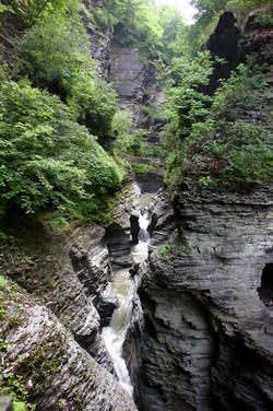 Gorge in Watkins Glen Park