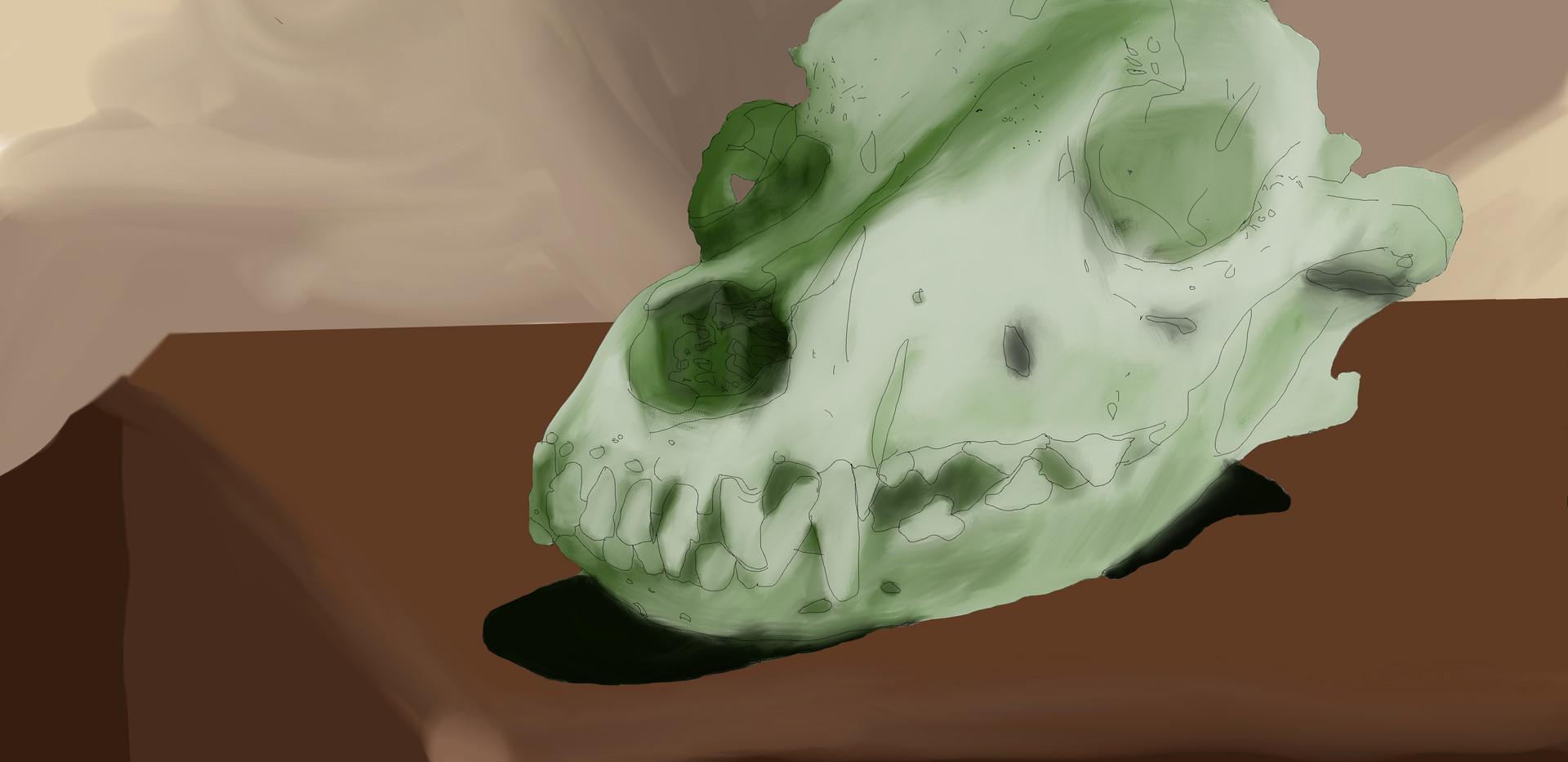 Ryan's Digital skull painting