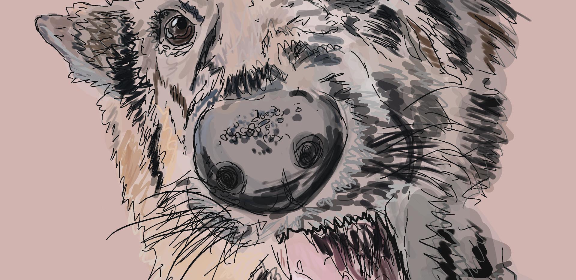 Hanna R- Ruby the Dog Illustration