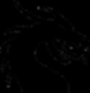 dragon-149393_1280.png
