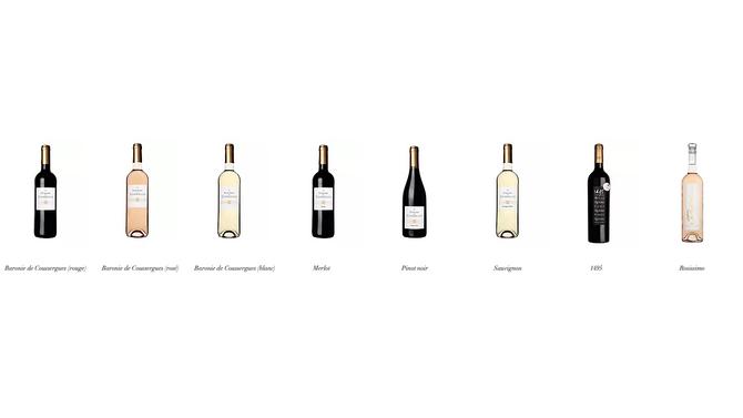 Notre gamme de vins en vente ici