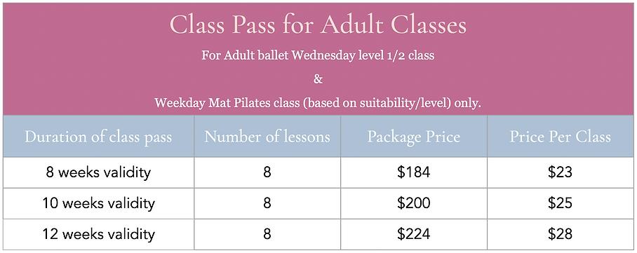 Class Pass for adult Class