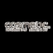 cosmetic-logo-par-wix.png