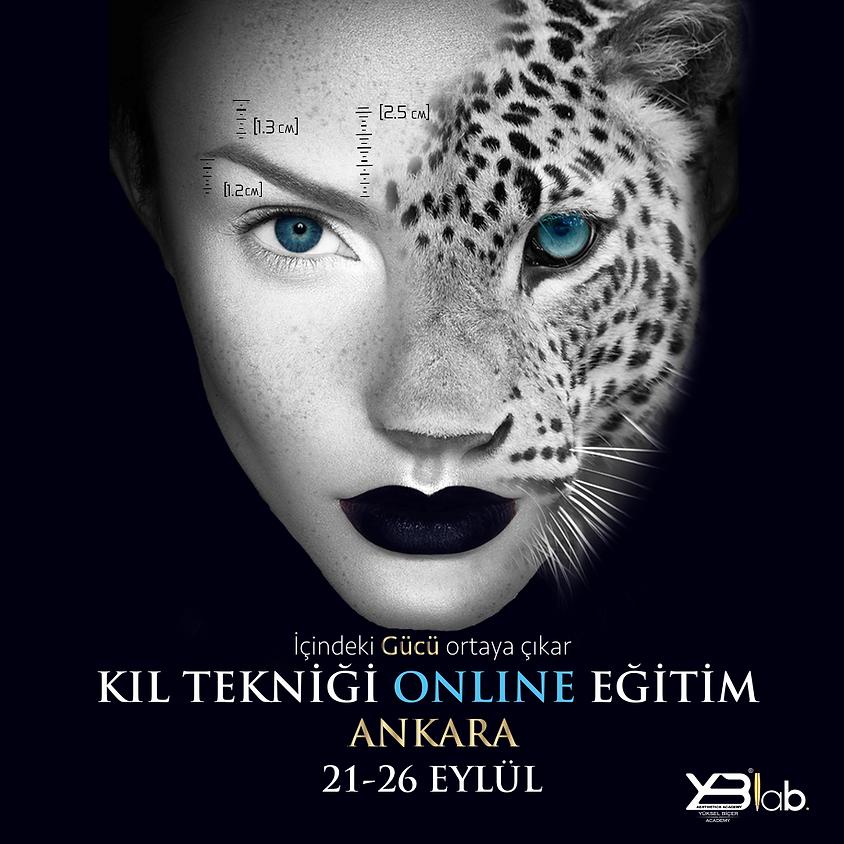 21 Eylül Online Kalıcı Makyaj KIL TEKNİĞİ Eğitimi (1)