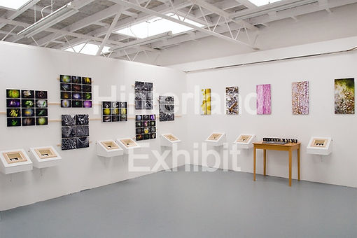 Final%20Year%20Exhibition%20Project%203x