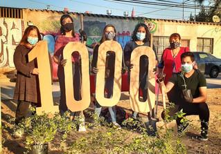 Con la entrega de la planta 1.000 candidato a constituyente cerró su campaña por el distrito 9