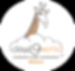 logo-cloud9world