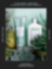 Screen Shot 2020-02-07 at 7.54.27 AM.png