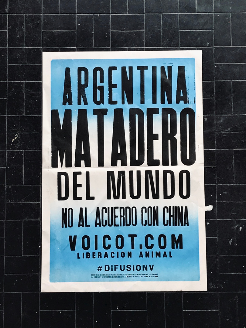 ArgMatadero.jpg
