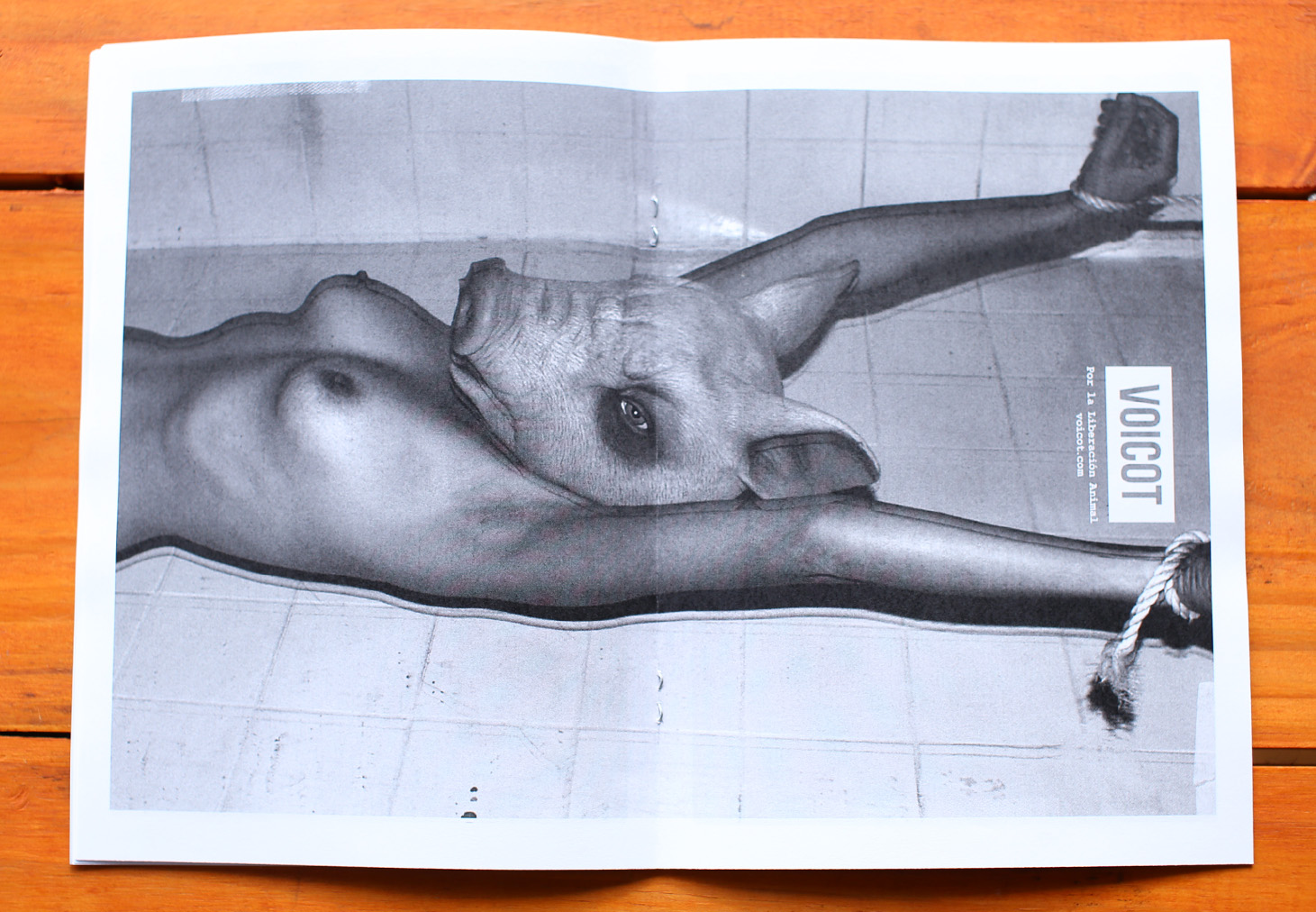 Fanzine Web 007