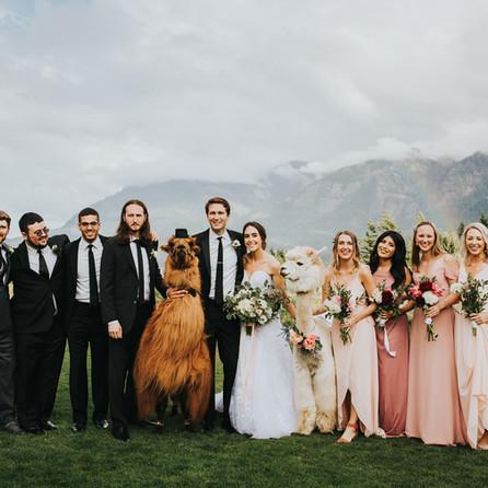 Molly and Nate: A Magical Double Rainbow Llama Wedding at Skamania Lodge
