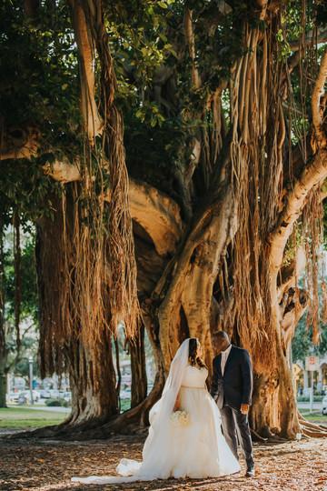 Eveillard Nova 535 Wedding St Petersburg