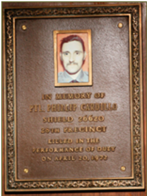 CARDILLO  PLAQUE 28 Pct.png