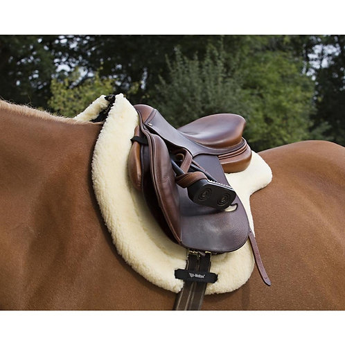 Teddy Saddle pad