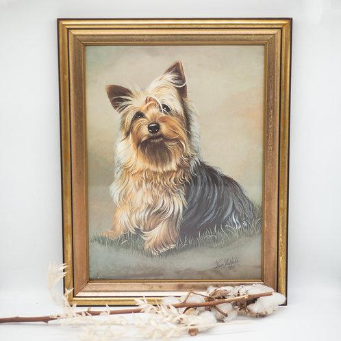 Large Vintage Yorkshire Terrier Print by Brian Hupfield in Gold Vintage Frame