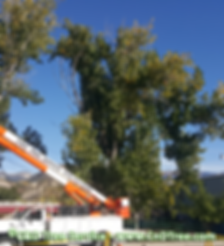 C&D Tree Service truck with boom for trimming trees