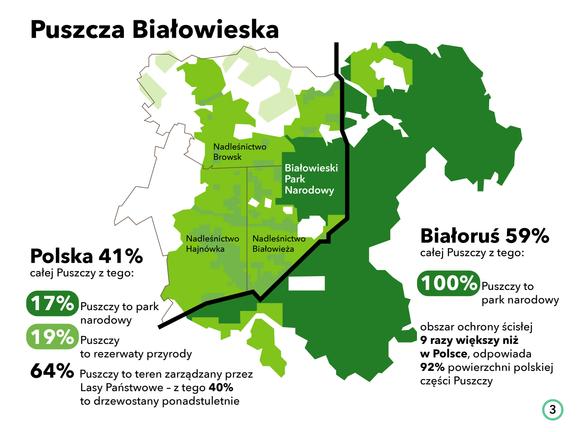 Białowieża_mapa