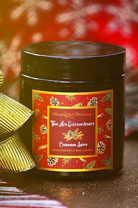 Cinnamon Spice Holiday 3.1oz Mini Candle